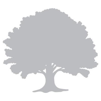 simpson-hp-icon-nature